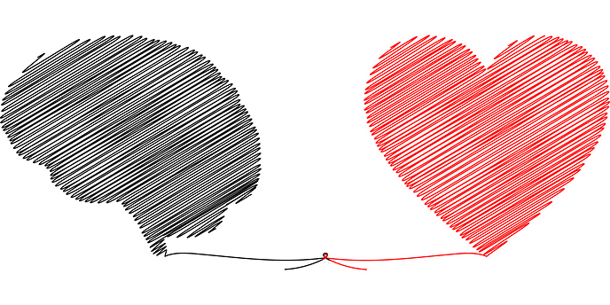 An image of a heart and a mind